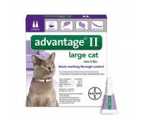 Bayer - Advantage II Cat Largeᅠ > 9#